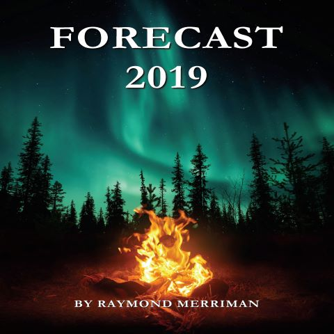 Forecast 2019 Book Cover
