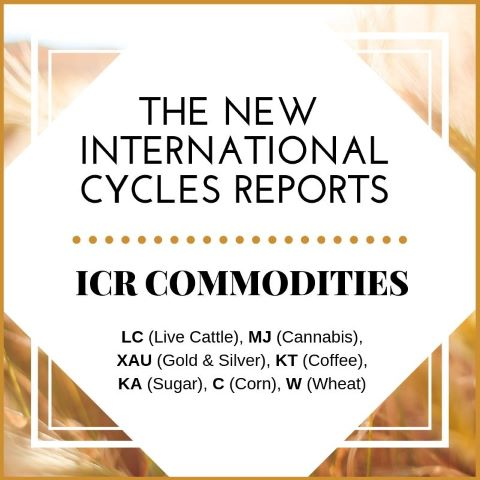 International Cycles Report: Commodities